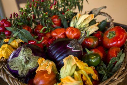 Agriturismo La Romagnana - verdure dellorto